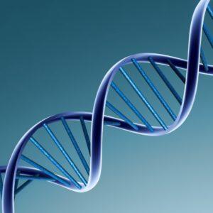 Судмедэкспертиза ДНК