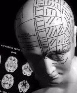 Независимая психиатрическая экспертиза: цена