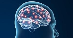 Психолого-психиатрическая экспертиза аффекта